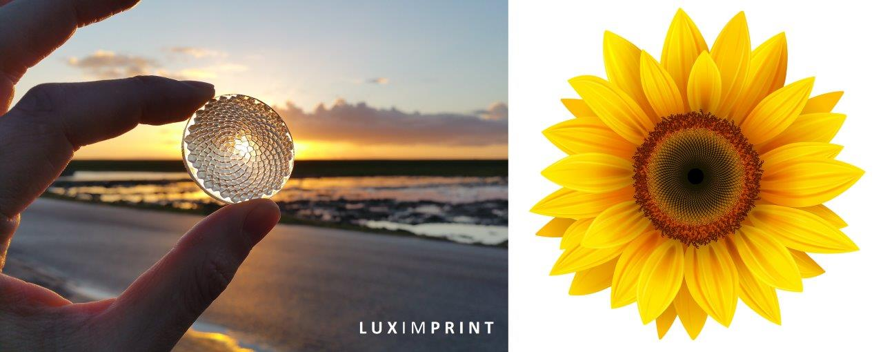 Picture of Sunflower Fresnel lens as designed by Physionary and printed by Luximprint.