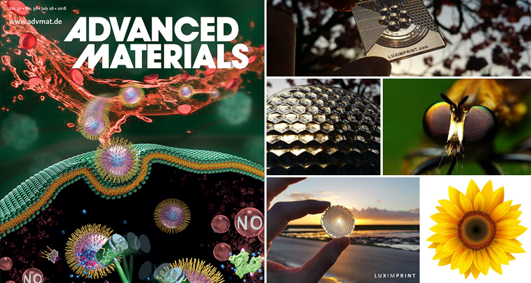 Image of Advanced Materials Publication about mimicry and additive optics fabrication