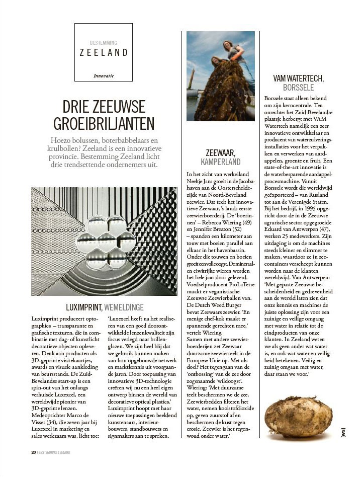 Image of Zeeuwse Groeibriljanten Article by Elsevier about local Zeeland business