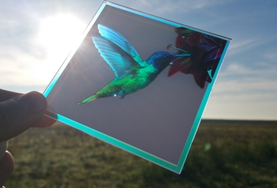 Image of Luminous Concepts Hummingbird Demonstrator Panel