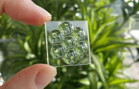 Image of a 3D printed handheld optical flyes eye lens array with leaves background