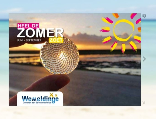 Summer Program Wemeldinge 2019