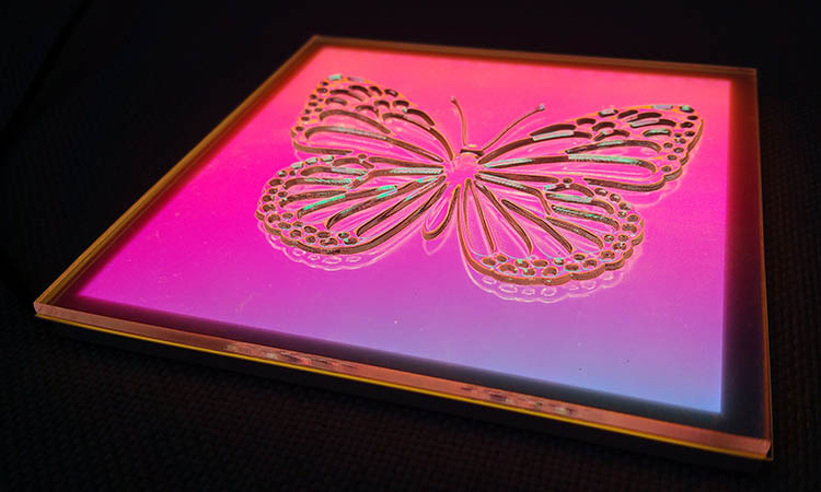 Image of butterfly as icon for experiential design in automotive lighting
