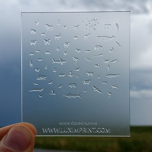 Main image for Luximprint Sample shop containing optical 3D printed micro graphics